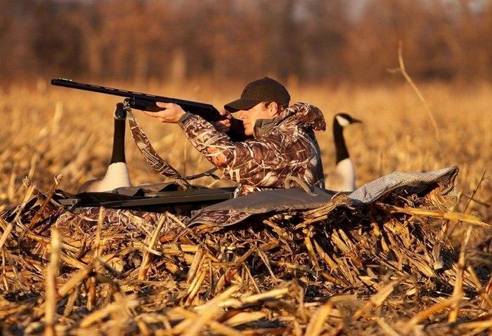 тонкости охоты на утку
